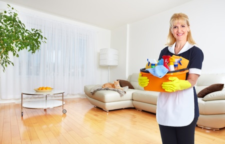 Domestic Cleaning Services – MM Household Services